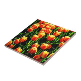 Sunshine Tulips Small Square Tile