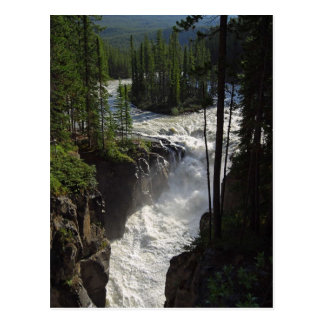 Sunwapta Falls In Jasper National Park Postcard