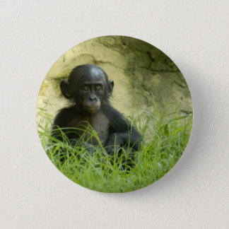 Sup? DArcy Evans Photo 6 Cm Round Badge