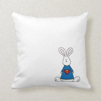 Super Banni's Cushion