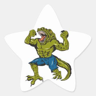 Super Croc Star Stickers