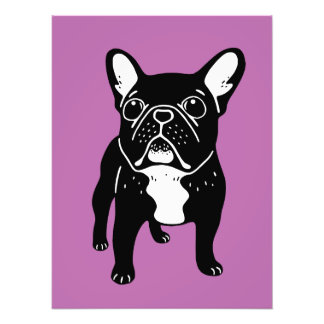 Super cute brindle French Bulldog Puppy Photo Print