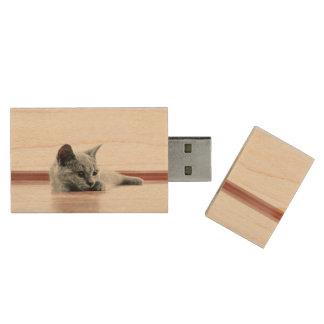 SUPER CUTE Kitten Portrait Wood USB Flash Drive