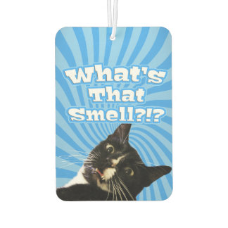 Super Funny Cat Car Air Freshener