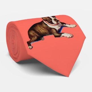 super good-looking Boston terrier Tie