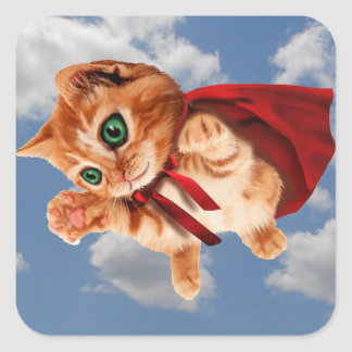 Super Kitty Square Sticker