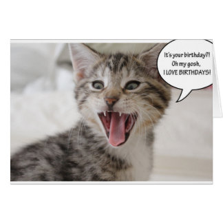 Super Surprised Birthday Kitten! Greeting Card