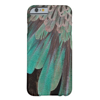 Superb Bird of Paradise feathers Barely There iPhone 6 Case