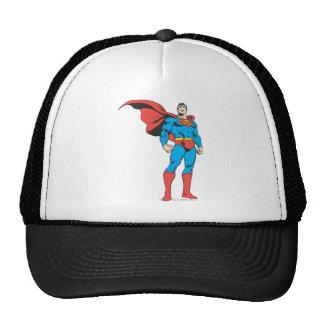 Superman Posing 3 Mesh Hat