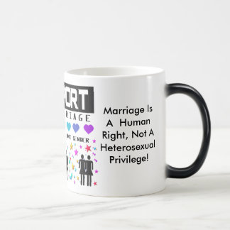 Support Marriage Morphing Mug