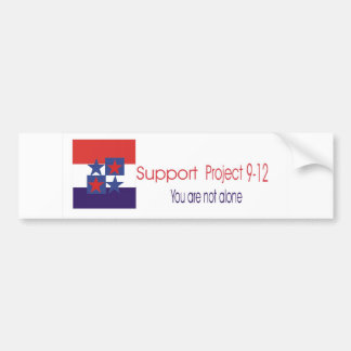 Support project 9-12 bumper sticker