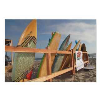 Surf board rodeo poster
