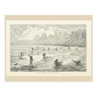 Surf-Swimming, Sandwich Islands Postcard