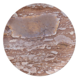 Surface of a red sandstone with siliceous geods plate