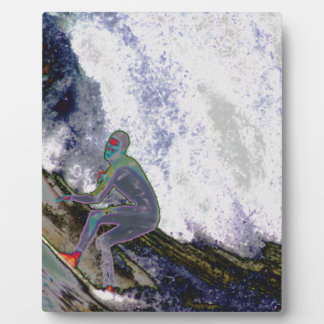 Surfer4 Display Plaques
