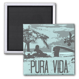 Surfing Endless Summer Costa Rica Magnet