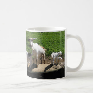 Surfing Goats Coffee Mugs