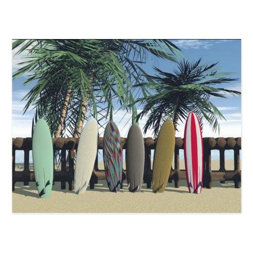 Surfing Postcard Postcards