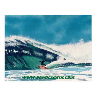 Surfing Surfer Tube Ride California Postcard Art