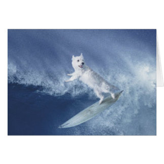 Surfing Westie! Card