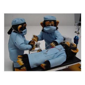 Surgeon Assistant Postcard