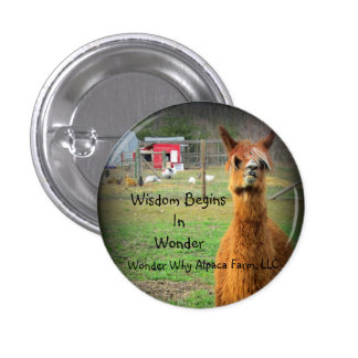 Suri Alpaca Button