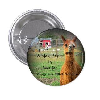 Suri Alpaca Button