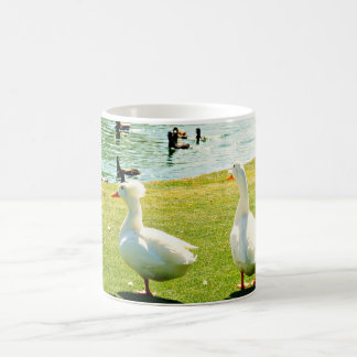 Surprise Arizona Duck Pond Coffee Cup