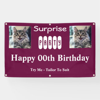 Surprise Birthday Party For Twins Banner