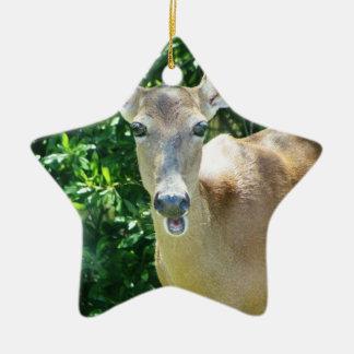 surprised deer.jpg ceramic ornament