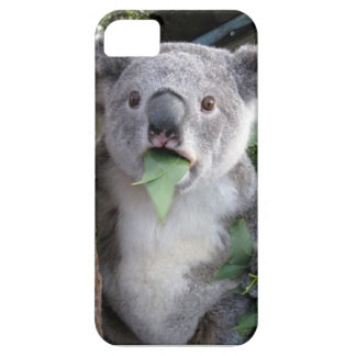 Surprised koala phone case
