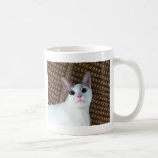 Surprised White Cat Coffee Mug