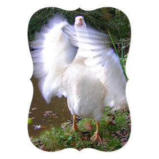 Surreal Motion Blurred Picture Of White Goose Flap 13 Cm X 18 Cm Invitation Card