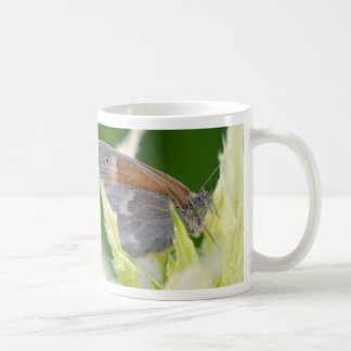 surrounded coffee mugs