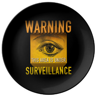 Surveillance Warning Big Brother Atomic Age Grunge Plate