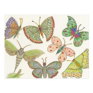 Survivors Hub Series #4 Butterflies Postcard