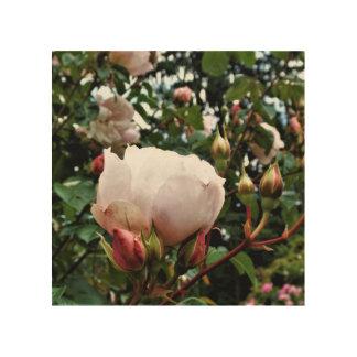 Sustainable Woodblock Rose Print (many sizes)