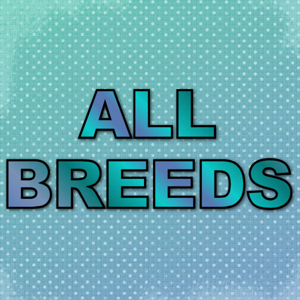 All Breeds