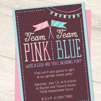 Team Pink or Team Blue Baby Shower Suite