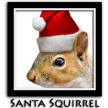 Santa Squirrel