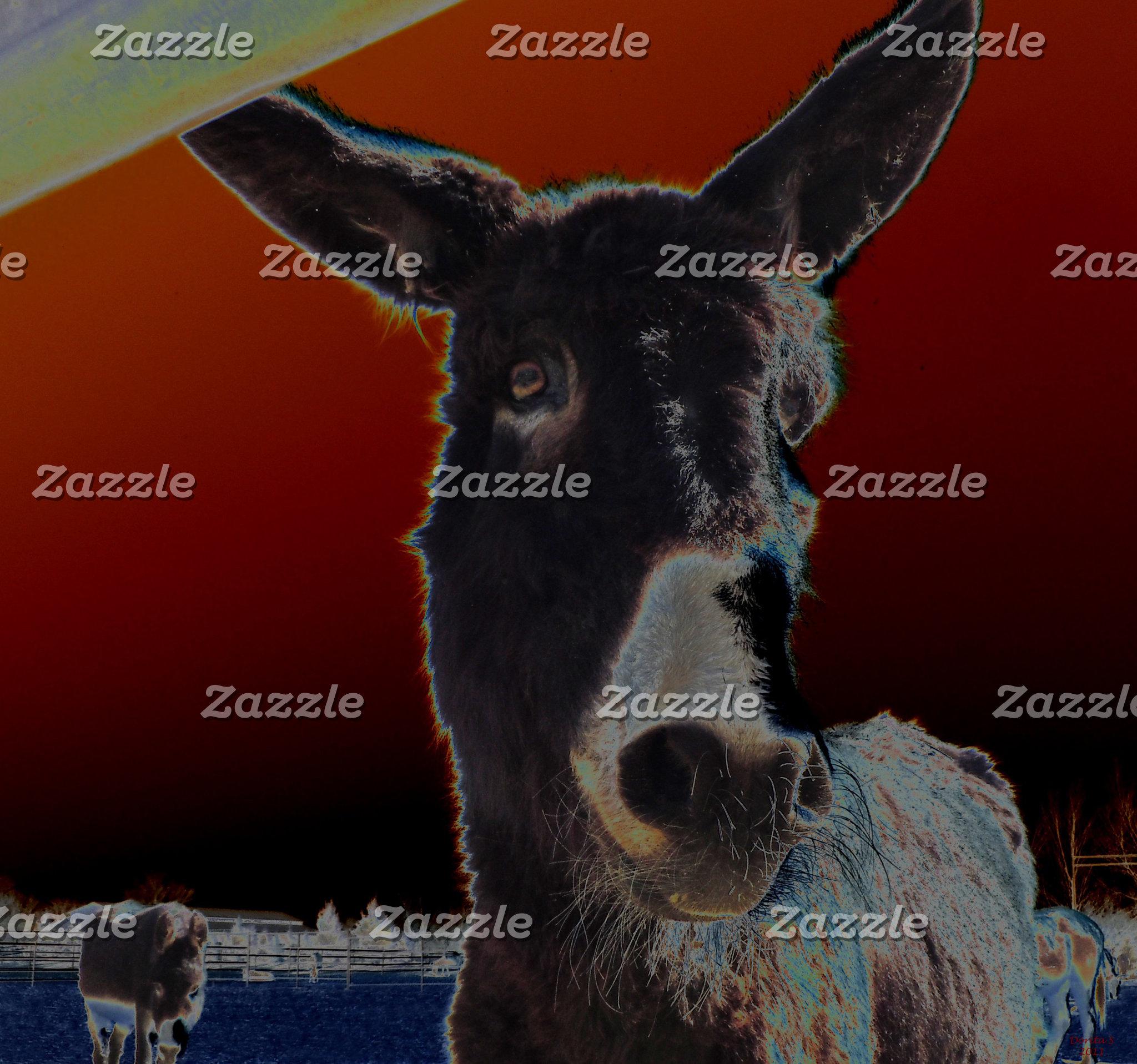 Donkey Friends