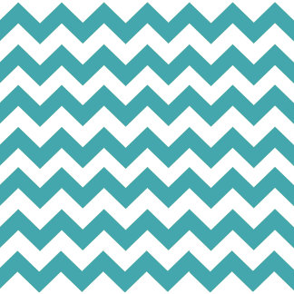 Chevron Stripe Pillows