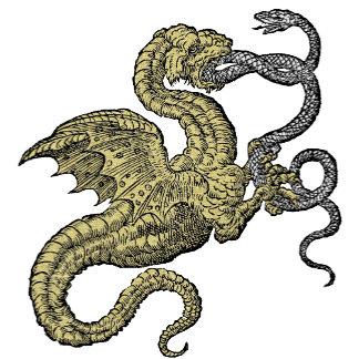 Dragon vs. Snake
