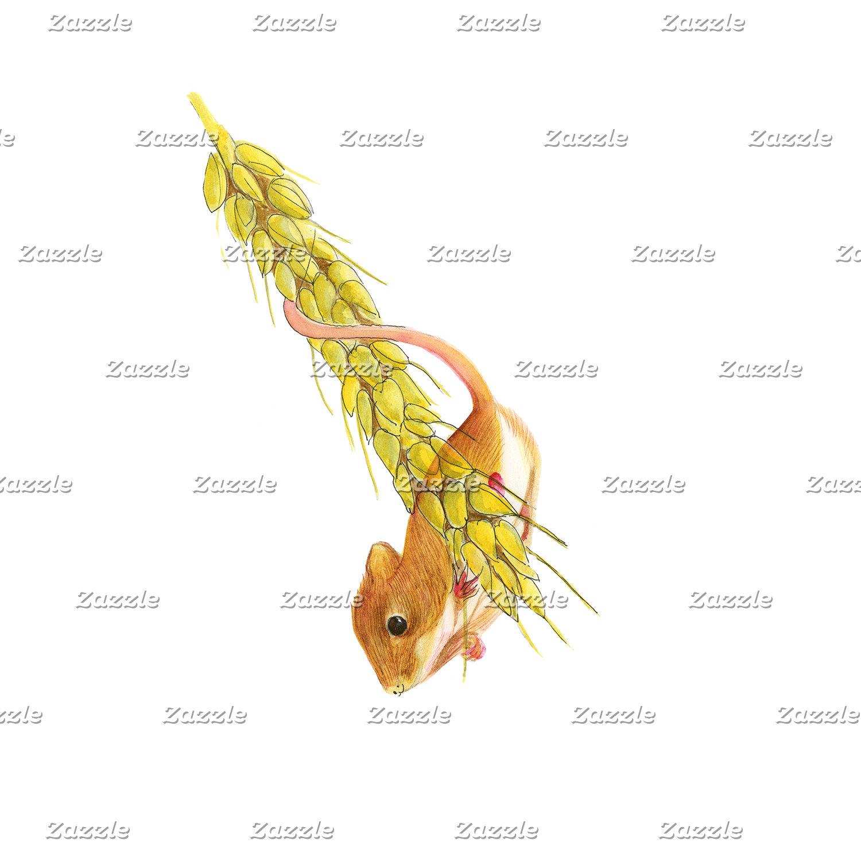 Harvest Mouse Watercolour Artwork