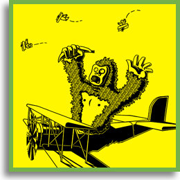 Apes on Planes