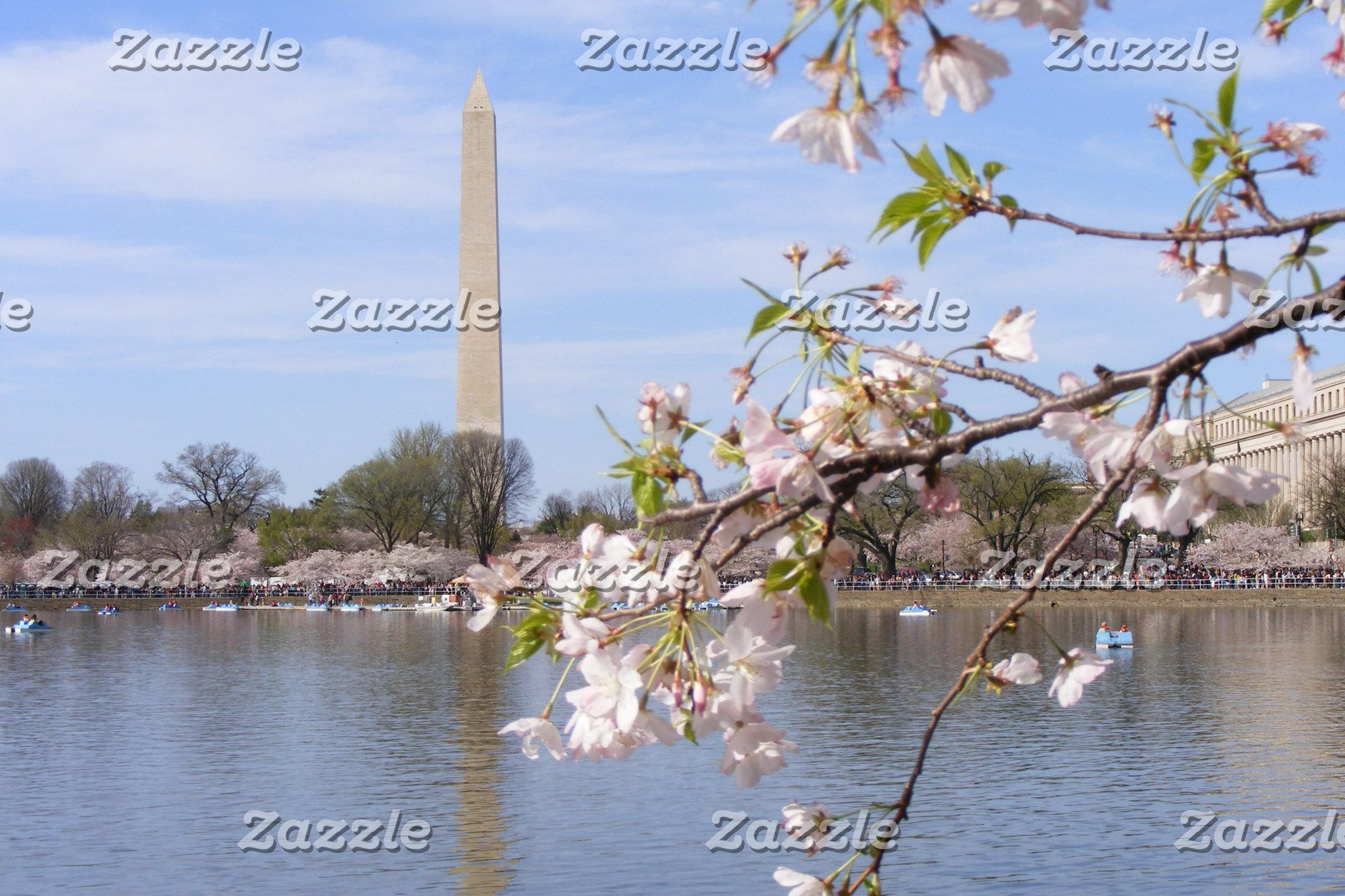 Washington Monument Scenery