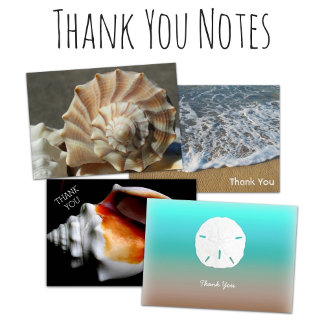 TY Notes