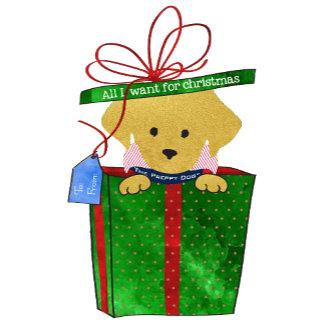 Christmas Present Preppy Retriever