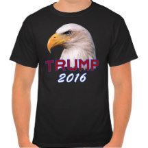 Politics 2016
