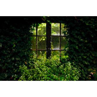Window green secret garden